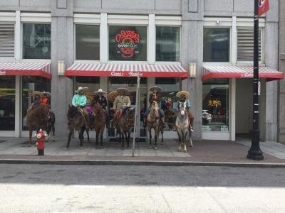 Horses in Front of Cooper's